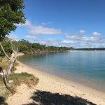 Beach edge of the Park