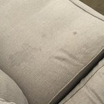 Dirty stained sofas and dining chairs