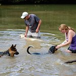 Our swimming pond is great for dogs and their human companions.