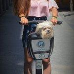 Photo of Segway Travel Madrid
