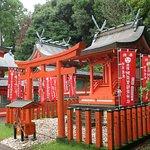 Photo of Asuka Shrine