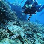 Below The Surface Dive Centre Foto