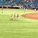 Tropicana Field照片