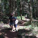 Billede af Troldeskoven