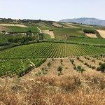 Agriturismo Fattoria Manostalla Villa Chiarelli - Ristorante Foto