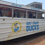 Foto de Gulf Coast Ducks