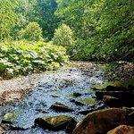 Daisy nook County Park
