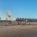 洋城海滩照片