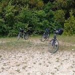 Photo de Island House Bike Shop