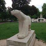 Jardin Darcy照片