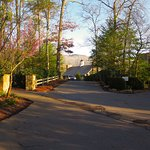 Blackberry Farm - Grounds & Plantings in Early Spring