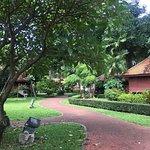 Bild från Saranrom Park