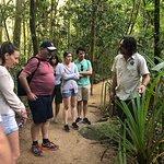 Tony's Tropical Adventures