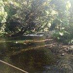 Noah Creek