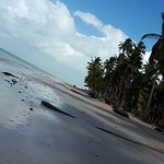 Foto de Praia Ponta de Mangue