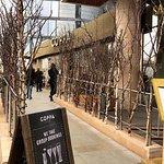 Photo of Coppa Club - Tower Bridge