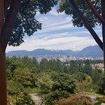 Foto de Seasons in the Park