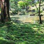 Saihoji Temple Photo
