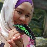 Foto de Kuala Lumpur Butterfly Park
