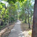 Red Arrow - outside walking path is steep