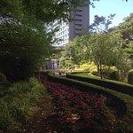 ホテルニューオータニ日本庭園の写真