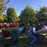 Kingsbury Episcopi Band in the garden