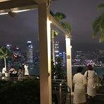滨海湾金沙空中花园观景台照片