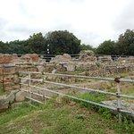 Ruiner og hegn