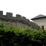 Array of crenellations