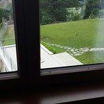 Ausblick bei der Fensterbank ca 10 Fliegen