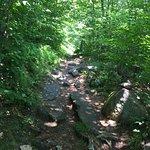 Mount Ascutney照片