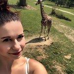 Foto de Safari Park Dvur Kralove