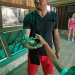 Photo of Corfu Aquarium