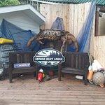 Foto de George Inlet Crab Feast
