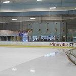 NHL size ice rink.