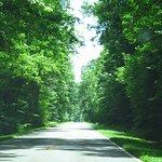 Natchez Trace Parkway의 사진
