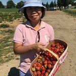 Фотография Knott's Berry Farm