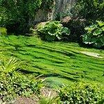 Monumento Natural - Jardim das Ninfas (Giardino di Ninfa)
