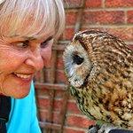 Happisburgh Owls照片