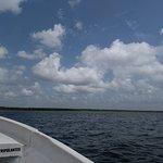 Osprey Tours Foto