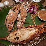 Photo of Galanga Restaurant