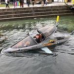 皇后镇鲨鱼快艇照片