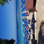Фотография Залив Фигового дерева