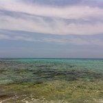 Cala Mesquida Beach照片