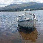 Blessington Lake Boat Hire照片
