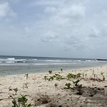 Barbados Summer surfing Drill Hall Beach
