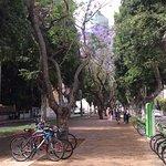 תמונה של Rothschild Boulevard