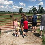 صورة فوتوغرافية لـ Taylor Made Farm