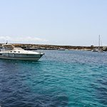Catamarano Alien Boat Tours照片