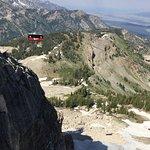 Jackson Hole Aerial Tram Resmi